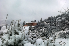 hotel_in_snow